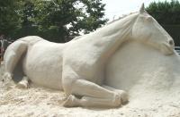 Sand sculpturist